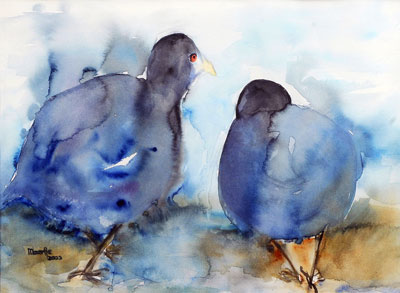 waterhoentjes-aquarel-40x50